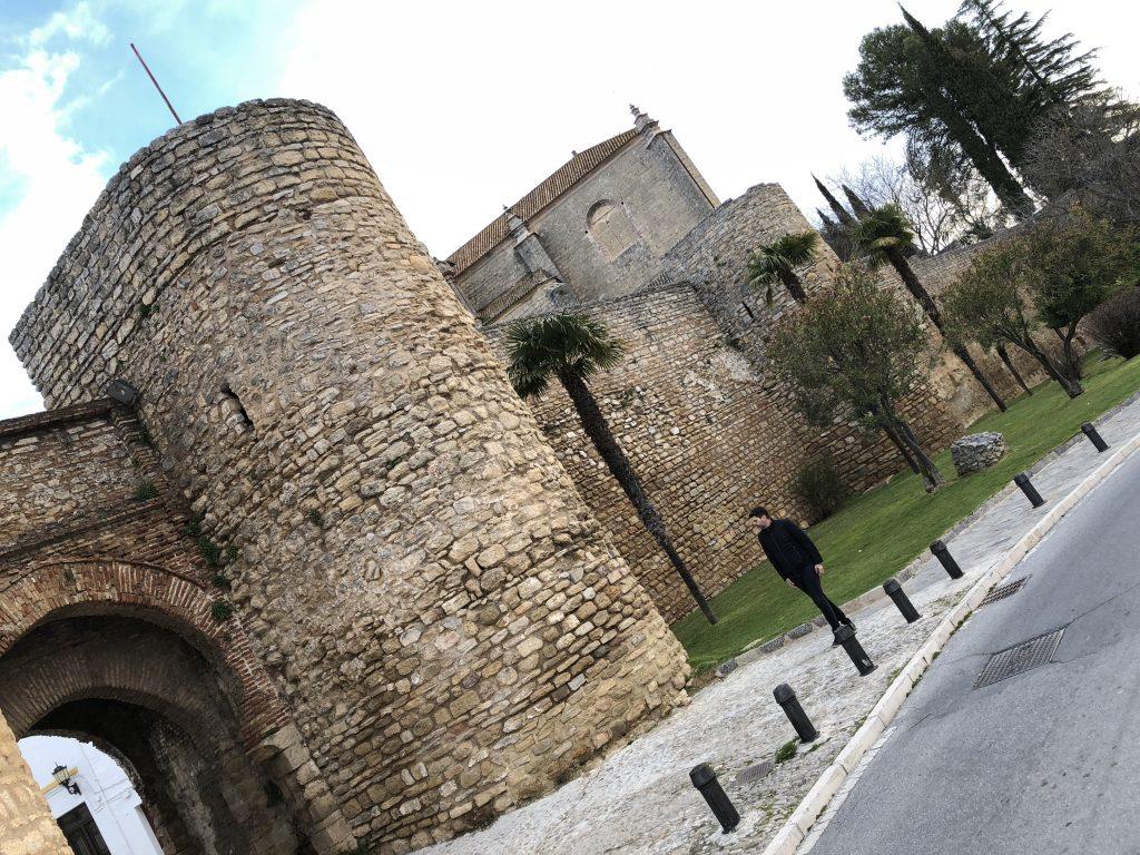 Murallas e Puerta de Almocábar